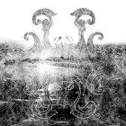 callisto_natureunfolds_shreddermag